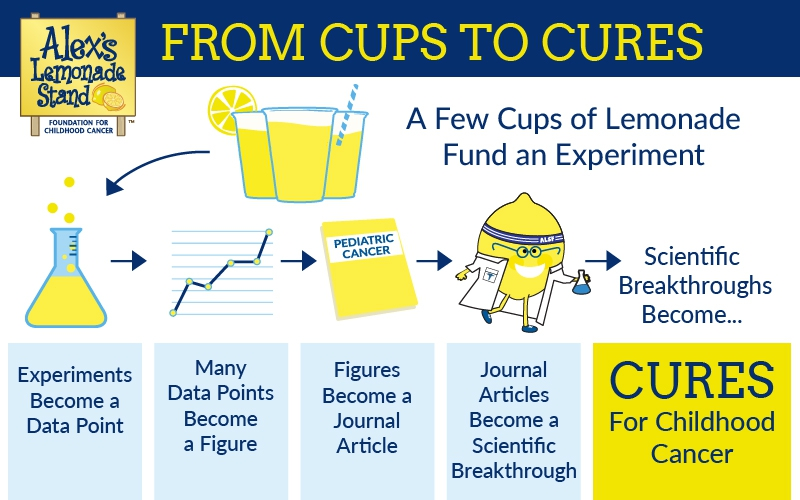 Dr. Jeffrey Huo, an ALSF grantee, explains how research happens beginning with cups of lemonade and moving through the research process.