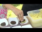 Camilla Belle and Michael Voltaggio Support Alex's Lemonade Stand Foundation